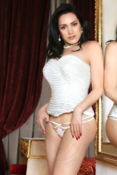 Reina Sofia  CASTELFRANCO VENETO 3478855255