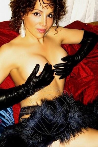 Italianissima Terry  PADOVA 3358792324